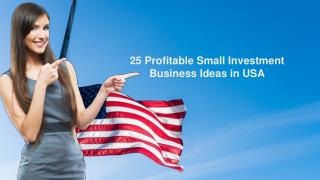 25 Profitable Small Investment Business Ideas in USA