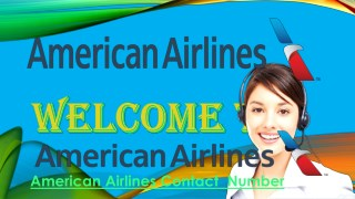 Contact American Airlines for Any Queries