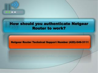 How should you authenticate Netgear Router to work?