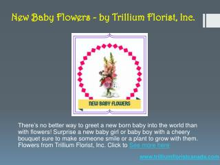 New Baby Flowers - by Trillium Florist, Inc.
