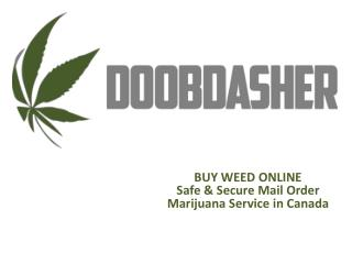 Here we have a perfect solution for online marijuana in Canada