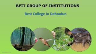 Bsc Forestry colleges dehradun