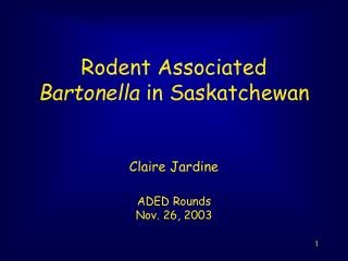 Rodent Associated  Bartonella  in Saskatchewan