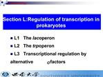 L1   The lac operon L2   The trp operon L3   Transcriptional regulation by             alternative s factors