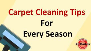 Carpet Cleaning Tips For Every Season
