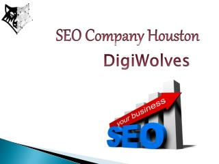 SEO Company Houston - #1 Digital Marketing Company - Digiwolves