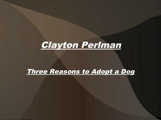 Clayton Perlman-Three Reasons to Adopt a Dog