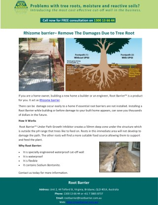 Rhizome barrier– Remove The Damages Due to Tree Root
