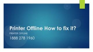 Printer Offline How to fix it- Free PDF