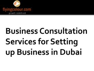 Excellent Business setup Services in Dubai