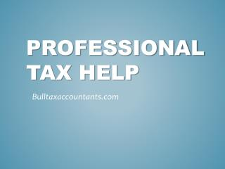 Professional Tax Help - Bulltaxaccountants.com