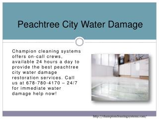 Peachtree City Water Damage