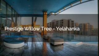 Prestige Willow tree Flats in Bangalore