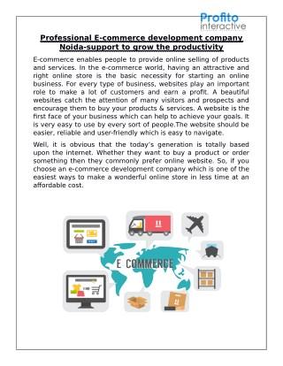 E-commerce Development Company Noida