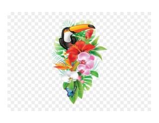 clipartmax tropical transparent flower clipart presentation ppt powerpoint
