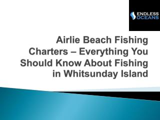 Airlie Beach Fishing Charters – Everything You Should Know About Fishing in Whitsunday Island