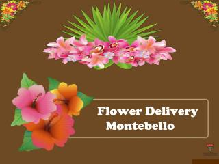 Flower Delivery Montebello