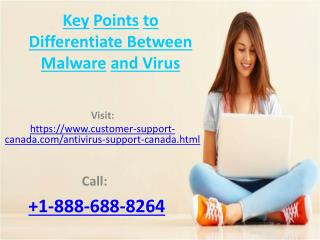 Key Points to Differentiate Between Malware and Virus