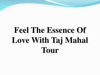 Taj MAhal Tour 20% off Special Discount