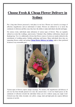 Choose Fresh & Cheap Flower Delivery in Sydney