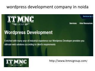 wordpress development company in noida