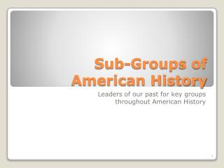 Sub-Groups of American History