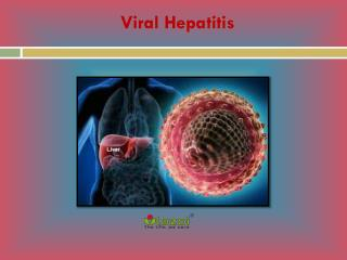 Viral Hepatitis: Causes, Symptoms, Daignosis, Prevention and Treatment