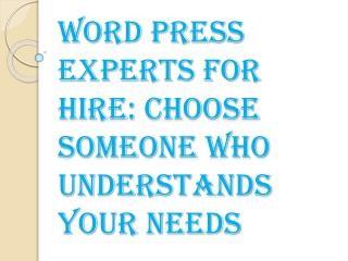 Word Press Experts for Hire: Choose Someone Who Understands Your Needs