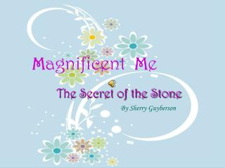 Magnificent Me The Secret Of The Stone