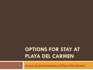 Options for stay at Playa Del Carmen
