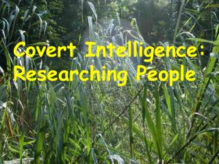 Covert Intelligence: Researching People