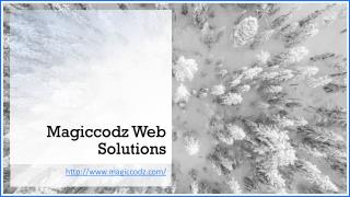 Website Development Company India - Magiccodz Web Solutions