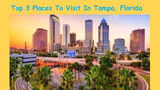 Top 3 Places You Should Must Visit In Tampa, Florida