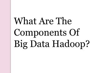 What are the Components of Big Data Hadoop?