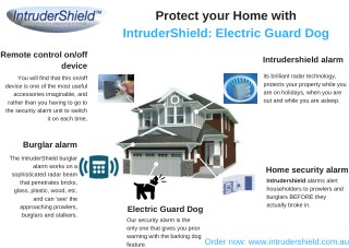 Protect your Home with IntruderShield: Electric Guard Dog
