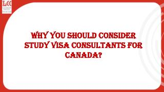 Need of Study Visa Consultants to Apply for Canadian Study Visa