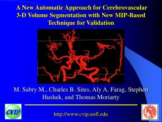 A New Automatic Approach for Cerebrovascular 3-D Volume Segmentation with New MIP-Based Technique for Validation