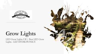 Buy Reasonable Priced Grow Lights at Ledhydroponics