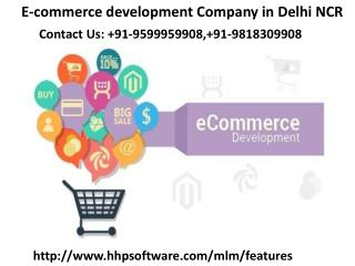 What do you think about E-commerce Website in Delhi  91-9599959908?