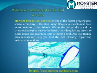 Monster Outdoors- Pool Cleaning Services Company in Houston,TX