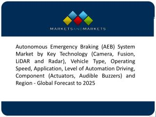 RaDAR-Based Autonomous Emergency Braking (AEB) System is Expected to Have the Largest Market
