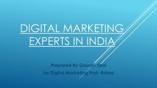 Digital Marketing Experts in India & Digital Marketing Professionals