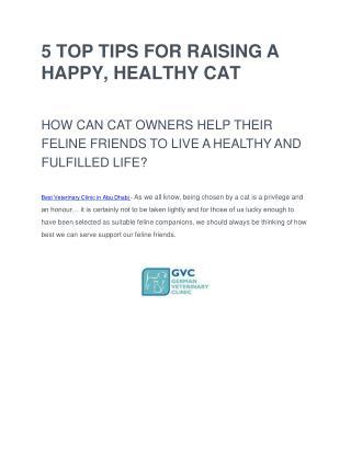 Cattery in Abu Dhabi - Cat Grooming Abu Dhabi - German Vet Abu Dhabi