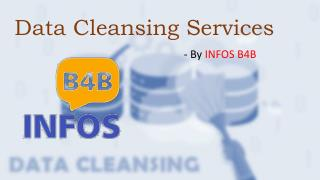 Data Cleansing Services   Data Cleansing   Data Cleansing Companies   Infos B4B