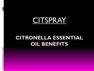 The Best Citronella Essential Oil a citspray.