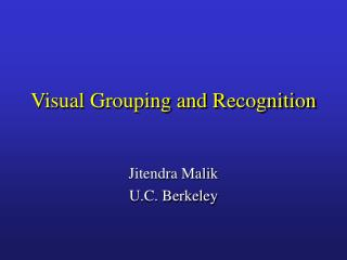 Visual Grouping and Recognition