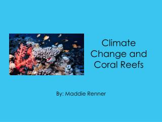 Climate Change and Coral Reefs
