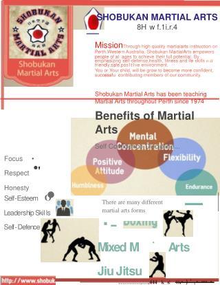 Martial Arts Perth for Kids and Adults - Shobukan Martial Arts