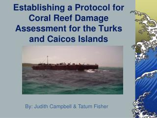 Establishing a Protocol for Coral Reef Damage Assessment for the Turks and Caicos Islands