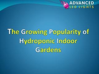 The Growing Popularity of Hydroponic Indoor Gardens